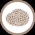 icona ricerca di tartufi