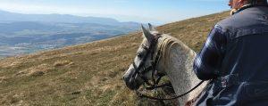 uomo-a-cavallo-sulle-colline-umbre